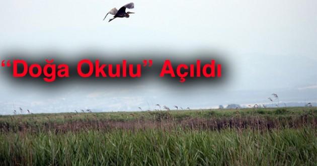 Kızılırmak Deltası'nda 'doğa okulu' açıldı