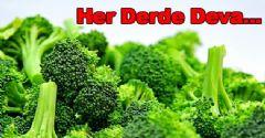 Brokoli'nin Faydaları