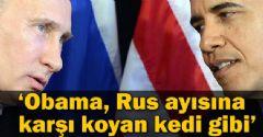 'Obama Rus ayısına karşı koyan kedi'