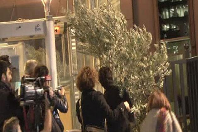 Kesilen Zeytin Ağacıyla Eylem Yaptılar!