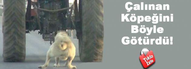 Çalınan Köpeğini Traktörün Arkasında Sürükledi