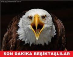 Beşiktaş'ın Galibiyeti Sosyal Medyayı Salladı!