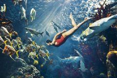 Rihanna Köpekbalıklarıyla Fotoğraflandı