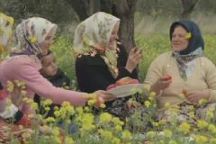 AK Parti'nin Yeni Reklam Filmi İzle