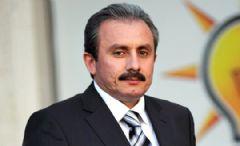 Mustafa Şentop: Osman Gökçek Listede Yok