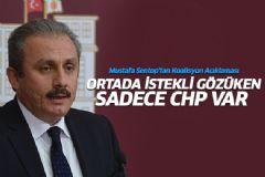 Mustafa Şentop'tan Koalisyon Açıklaması
