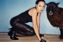 Angelina Jolie'den Koyunlu Bayram Kutlaması