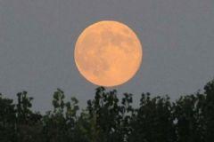 Bu Gece Gökyüzünde Süper ve Kanlı Ay Şöleni Yaşanacak