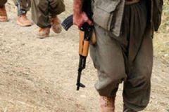 Çatışmada Öldürülen PKK'lı Coğrafya Öğretmeni Çıktı
