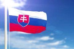 Slovakya Gümrük Görevlileri Suriyeli Kadın Sığınmacıyı Vurdu