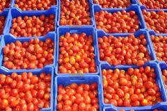 Rusya'dan Sebze Meyve Yasağı Hakkında Açıklama