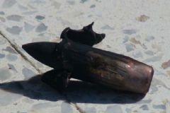 Kilis'e Bu Kez De Uçaksavar Mermileri Düştü