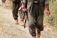 Kars'ta 1 PKK'lı Terörist Silahıyla Birlikte Yakalandı