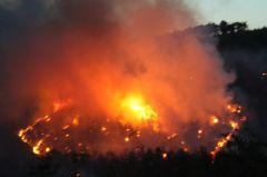 Keşan'daki Orman Yangını Kontrol Altına Alınamadı