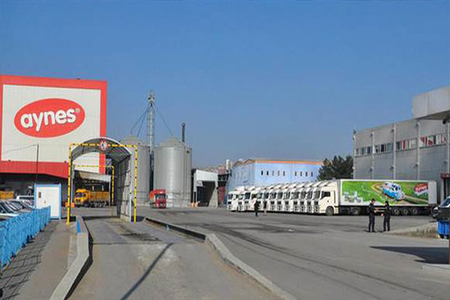 Ünlü Süt Ürünleri Zincirine FETÖ Operasyonu: Sahibi Gözaltında