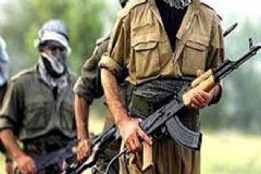PKK'lı Teröristler 6 Kamu Aracını Yaktı!