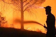 Kazdağları'ndaki Yangın Sabotaj Mı?
