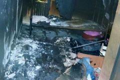 Nazlı Ilıcak'ın Kaldığı Bakırköy Cezaevinde İsyan Girişimi