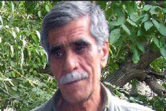 PKK'nın Üst Düzey Yöneticisi Öldü!
