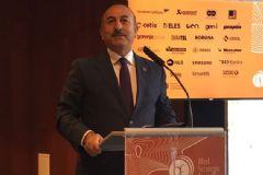 Bakan Çavuşoğlu Slovenya'da Açıklamalar Yaptı