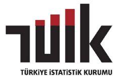 Türkiye Yılın İkinci Çeyreğinde Yüzde 3.1 Büyüdü