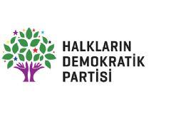 HDP Eş Genel Başkan Yardımcısı Alp Altınörs'le İlgili  HDP'den Yazılı Açıklama