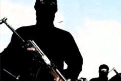 TSK: Hakkari'de Toplam 314 PKK'lı Etkisiz Hale Getirildi