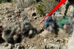 TSK Açıkladı! 10 Terörist Etkisiz Hale Getirildi