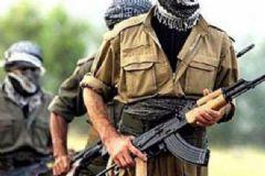 Batman'da Üst Düzey PKK'lı Yakalandı