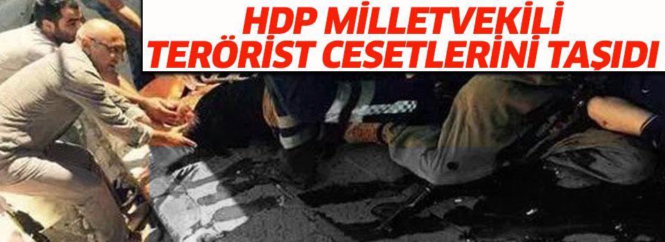 HDP Tunceli Milletvekili Alican Önlü Terörist Cesetlerini Taşıdı