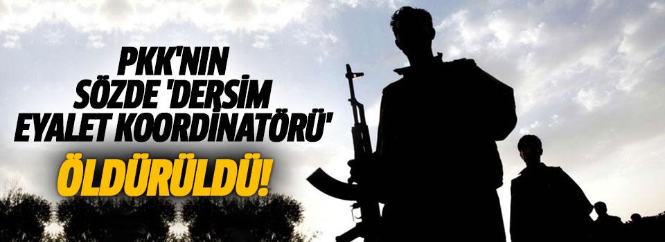 PKK'ya Ağır Darbe! Tunceli'de Önemli İsim Öldürüldü